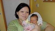 ELEN NEKVAPILOVÁ (3,65 kg a 51 cm) se poprvé představila rodičům Ivaně a Michalovi z Moravan a 6leté sestřičce Sofince 8.12. v 15:03.