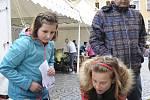Úterní oslavy Dne Země na chrudimském Resselově náměstí.