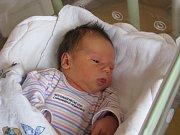 VIVIEN POKLOPOVÁ (3,53 kg a 50 cm) je od 2.12. od 9:05 prvorozenou dcerou Michala a Lýdie z Pardubic.