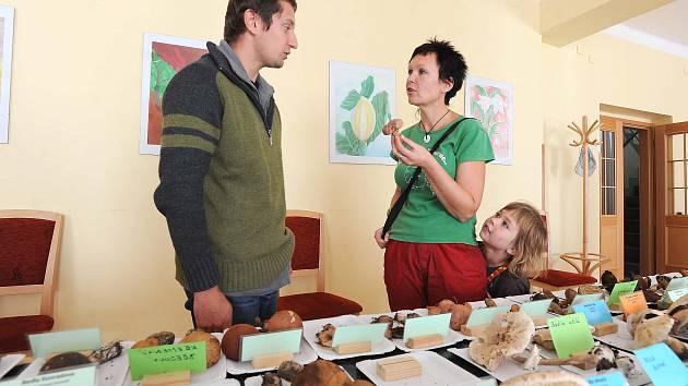 Výstava hub ve Slatiňanech.