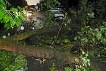 Spadlý strom způsobil poblíž sídliště U Stadionu dopravní zácpu. Uvízl v ní i kamion vezoucí nadměrný náklad. Rychlý zásah hasičů obnovil provoz na silnici během několika minut.