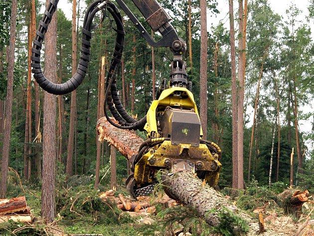 Harvester provádí těžbu dřeva v lesích kolem obce Pohled.