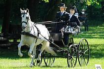 Závody koňských spřežení v heřmanoměstecké Bažantnici nesly název Memoriál Jiřího Škodného