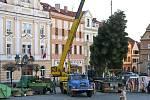 Resselovo náměstí se konečně dočkalo vánočního stromečku.