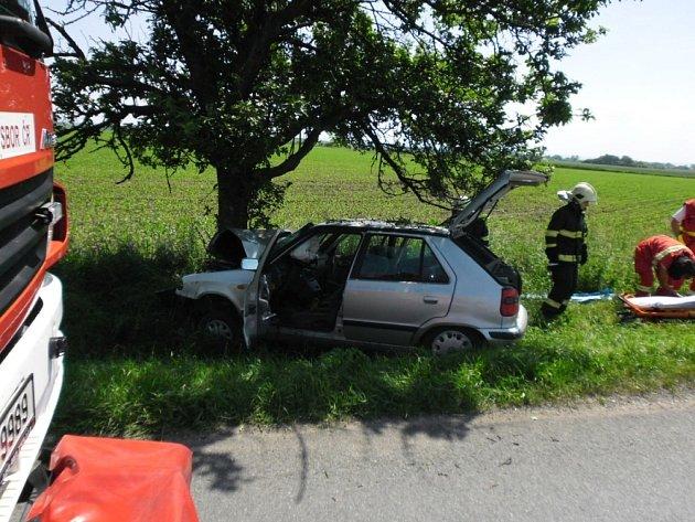 Automobil vDašicích narazil do stromu, zraněn byl řidič ijeho psí spolujezdec.