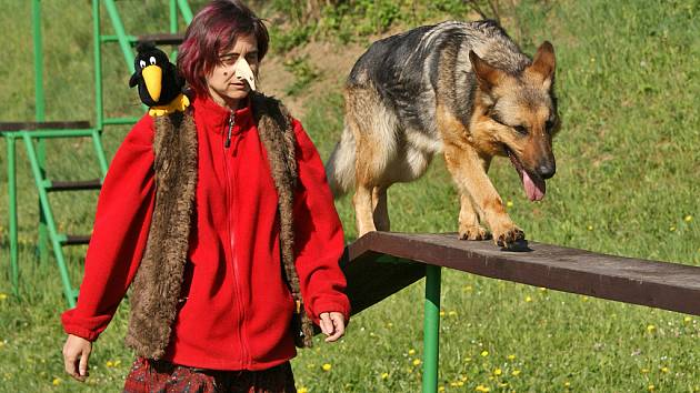 O čarodějnický pohárek města Chrudimě závodili v roce 2009 již podruhé pejskaři se svými miláčky.