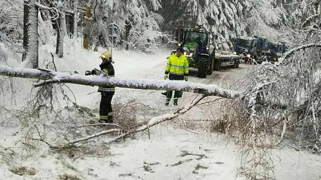 Hasiči odstraňovali padlé stromy