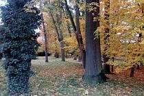 Zámecký park v Heřmanově Městci je zavřený. Foto: čtenářka z Pardubic