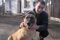 Riki: fena belgického ovčáka, velmi hodná, klidná a čistotná, dobře se snáší s ostatními psy. Má hormonální poruchu (Cushingův syndrom) - více pije (6-7 litrů denně), močí a má vyšší spotřebu potravy, kožní problémy, atrofie svalstva atd.