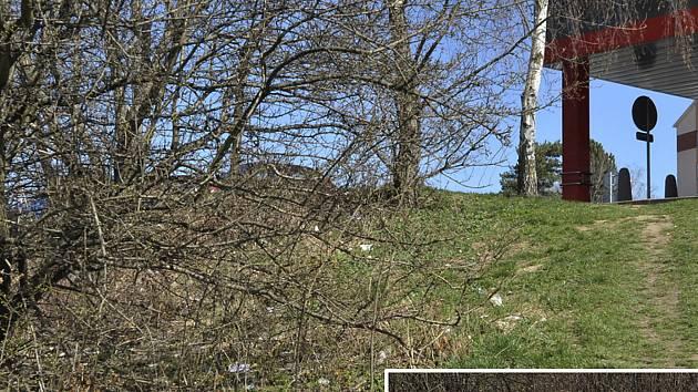 ZA HORIZONTEM zaneřáděného svahu se nachází plocha parkoviště. Odpadky z něj vítr mete dolů.