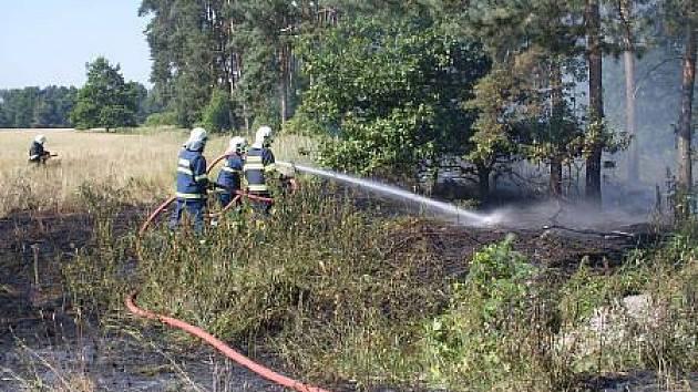 V nynějších tropických teplotách zasahují hasiči nejvíce u požárů podrostu.