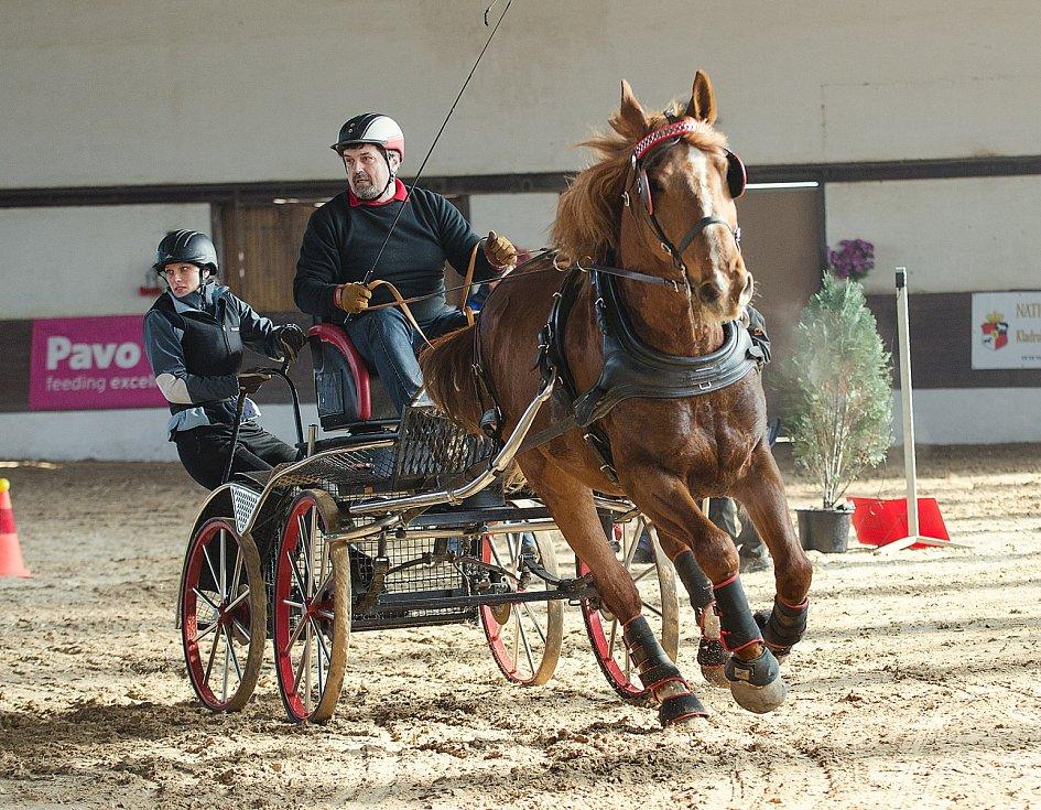 Z osmého ročníku halových závodů koňských spřežení ve Slatiňanech.