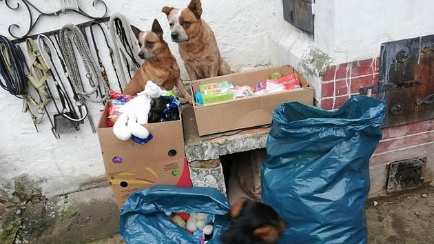 Žal nad úmrtím psa lidé mírní darováním jeho věcí útulku