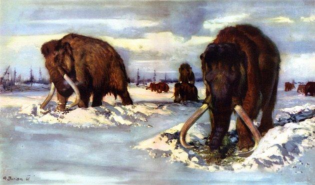 Mamuti ryjí ve sněhu - jeden z obrazů Zdeňka Buriana.