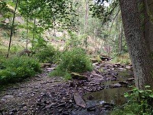 Vyschlé koryto řeky Krounky.