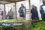 Z otevření vylepšení expozice Po stopách Keltů na zámku v Nasavrkách.