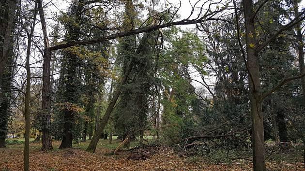 Vstup do parku musel být omezen například i po loňské podzimní vichřici.