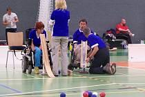 Hráči Boccii jsou dle závažnosti svého handicapu rozděleni do čtyřech soutěžních kategorií.