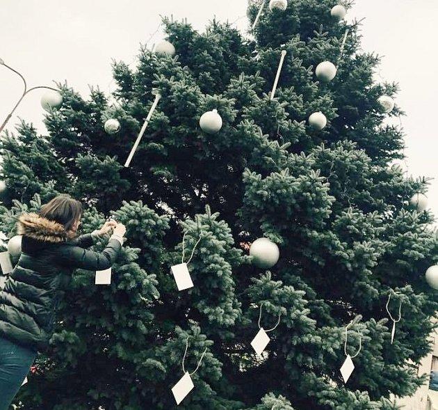 Stromek zdobily obálky s přáními lužských seniorů.