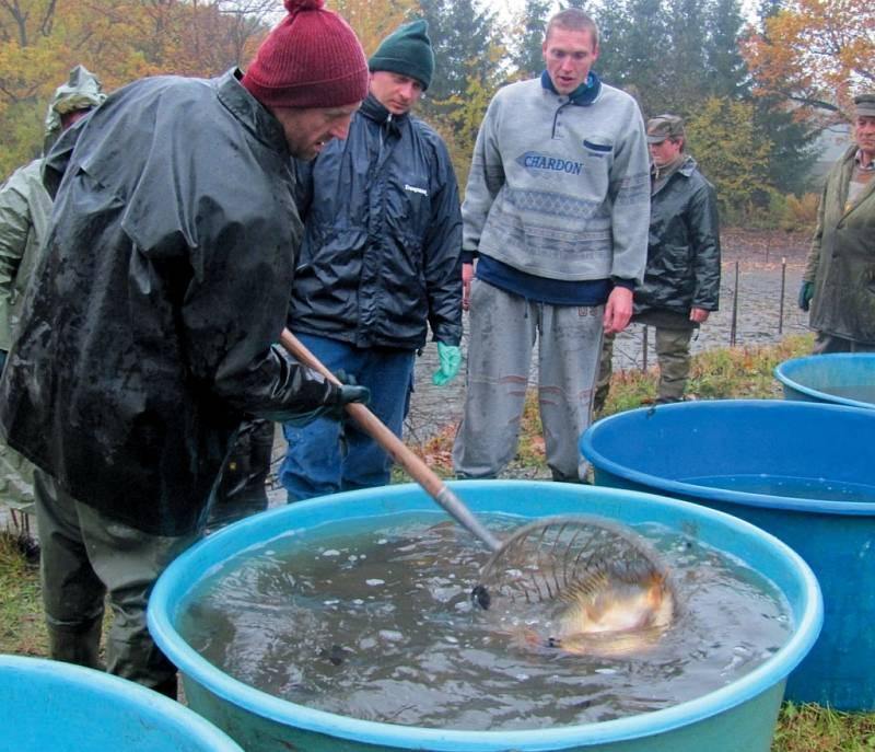 Výlovu rybníku v Loučkách nepřálo počasí.