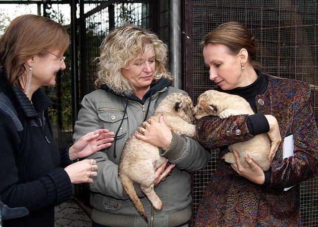 V soukromé zoo Kamila Korely v Kostelci u Heřmanova Městce je neustále živo.