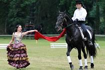Den koní ve Slatiňanech.
