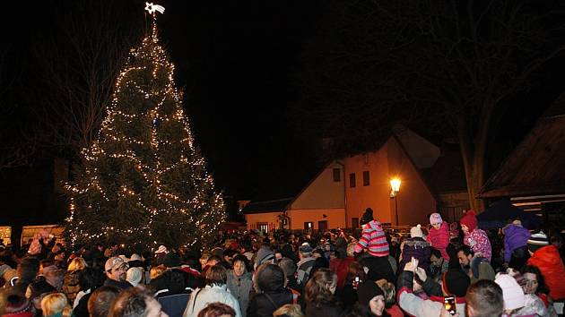 V hlineckém Betlémě rozsvítili vánoční strom.
