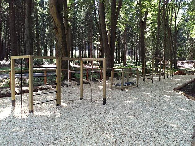 Lesní tělocvična u Nasavrk.