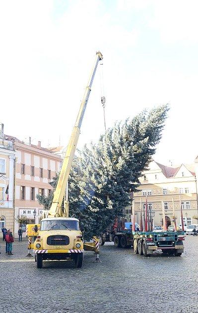 Nový vánoční strom na Resselově náměstí