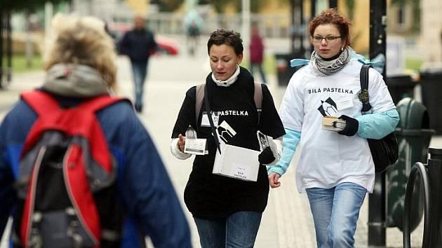 Veřejná sbírka Bílá pastelka ve čtvrtek 15. října v hradeckých ulicích.