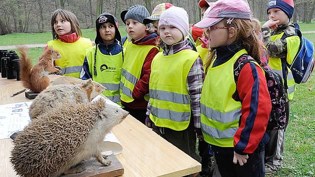 Sportovně – přírodovědného dne v parku Střelnice se účastnili školáci i předškoláci.