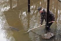 O víkendu proběhl výlov bačalského rybníka
