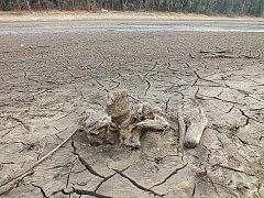 Sucho je patrné i na sečské přehradě.