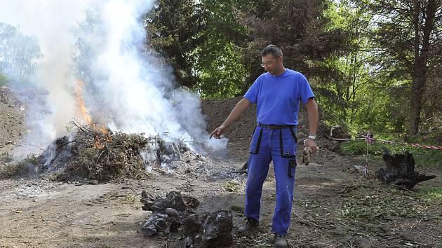 Velké pařezy nelze zpracovat štěpkovačem ani v krátké době jednoduše spálit.