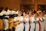 VII. benefiční ples vMFC Hlinsko