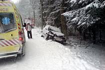 Hasiči ze stanice Hlinsko vyjeli v pátek k dopravní nehodě, která se stala na silnici v úseku Kameničky - Svratka u osady Krejcar.