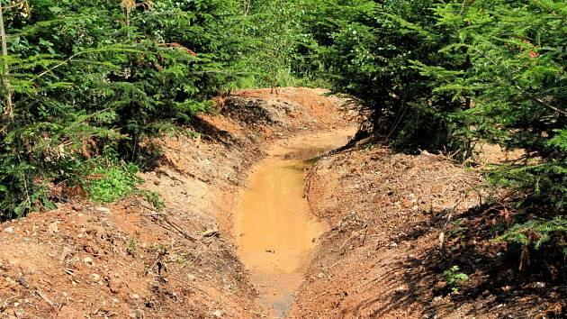Lesní cesty zadržují tolik potřebnou vodu