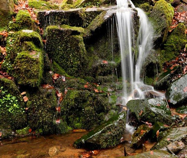 Ačkoliv počasí nepřipomíná jaro, pohled na přírodní krásy dokáže zahřát. Fotografka Petra Santová se vydala na procházku přírodními rezervacemi Strádovské Peklo a Krkanka, podél zde ještě divoké řeky Chrudimky. Prudké svahy údolí lemují skály, lesy jsou v