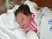 SOFIE KAROLÍNA GREGOROVÁ (3,68 kg a 50 cm) – toto jméno vybrali 1.2. v 15:15 pro svou prvorozenou dceru Anna a Jan z Podlažic.