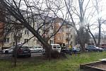 Nalomené stromy ohrožovaly auta na sídlišti Leguma v Chrudimi
