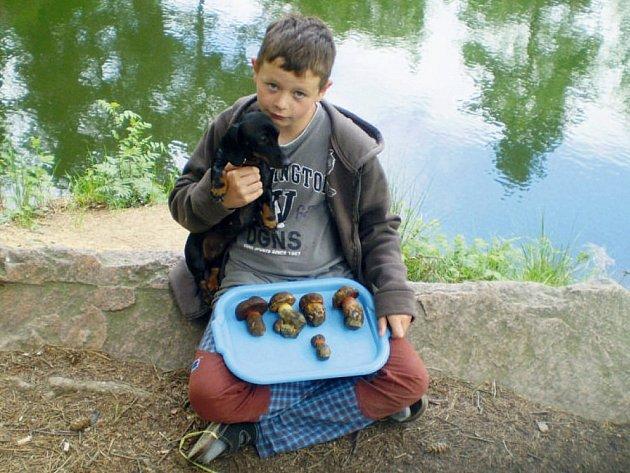 Ondřej Dejdar ze Žumberka se může pochlubit krásným úlovkem hřibů kovářů.