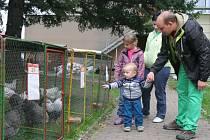 Chovatelská a zahrádkářská výstava v areálu Střední školy zemědělské a VOŠ Chrudim.