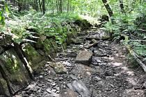 SUCHÉ KORYTO Čachnovského potoka. Na snímku je dobře patrný zpevněný břeh. Ten dříve zajišťoval, aby voda neukusovala kus louky, která s potokem kdysi sousedila.