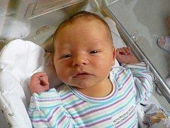 MATĚJ LOUKOTA (3,79 kg a 52 cm). Aneta a Jakub Loukotovi z Třebosic se 12.7. v 6:15 stali poprvé rodiči.