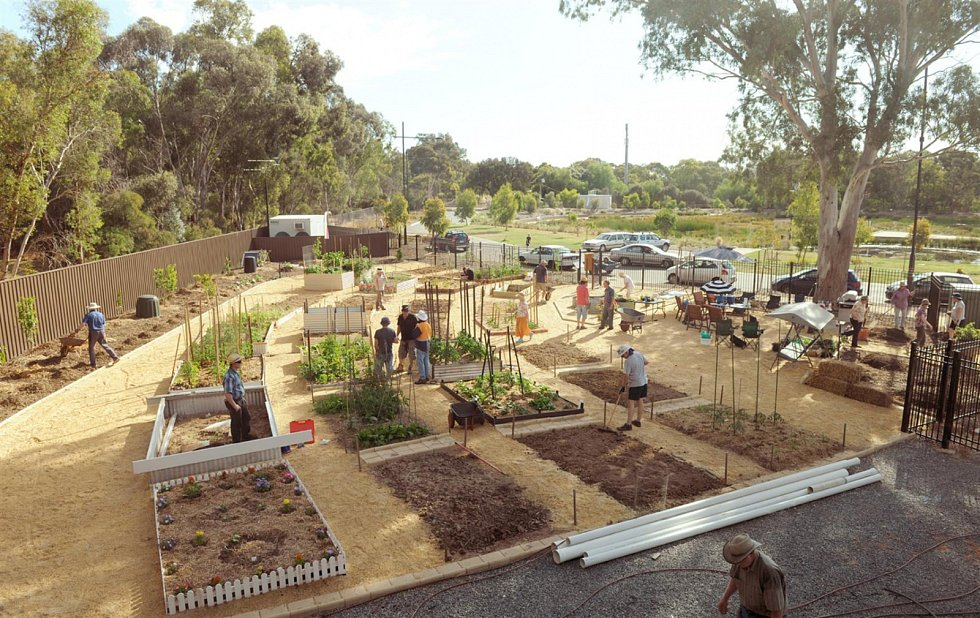 Komunitní zahrada.