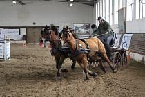 Zimní Jezdecký pohár ČJF ve Slatiňanech