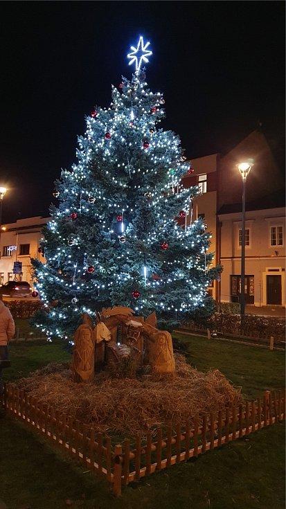 Vánoční strom - Chrast