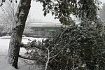 Sněhová kalamita zasáhla i největší město bývalého okresu Chrudim.