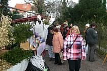 Vánoční jarmark i vyzdobené interiéry zámku ve Slatiňanech slavily úspěch, prohlídky začaly už v devět hodin.