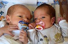 Lukáš a Anežka Brendlovi se narodili šťastným rodičům Romaně a Lukáši Brendlovým 27. července. Po porodu vážili 3,05 kg a 2,45 kg. Rodina žije v Úbislavicích.